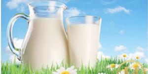 Cách giảm cân với sữa tươi không đường